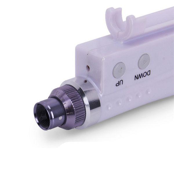2 in 1 Mesotherapie Pistole Derma Stempel Micro Nadel Stift Haut Meso Injector Anti Aging Gesichtshautpflege Schönheit Maschine