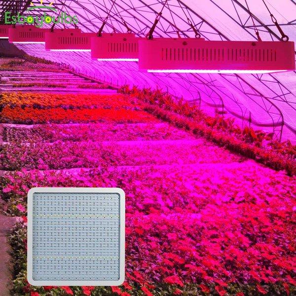 Led Grow Light 800w Seedplant Indoor Phyto Lamp Full Spectrum Led Panel For Plants Grow Tent Greenhouse Lettuce Tomato Seedling Lights For Garden