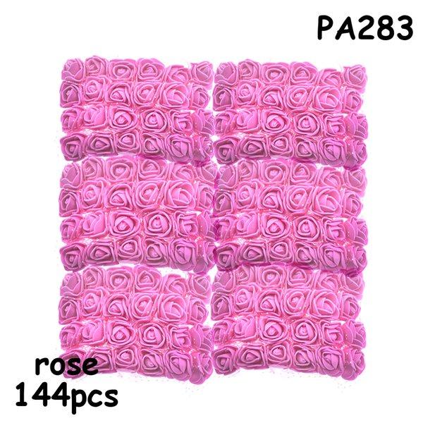 PA283 rose