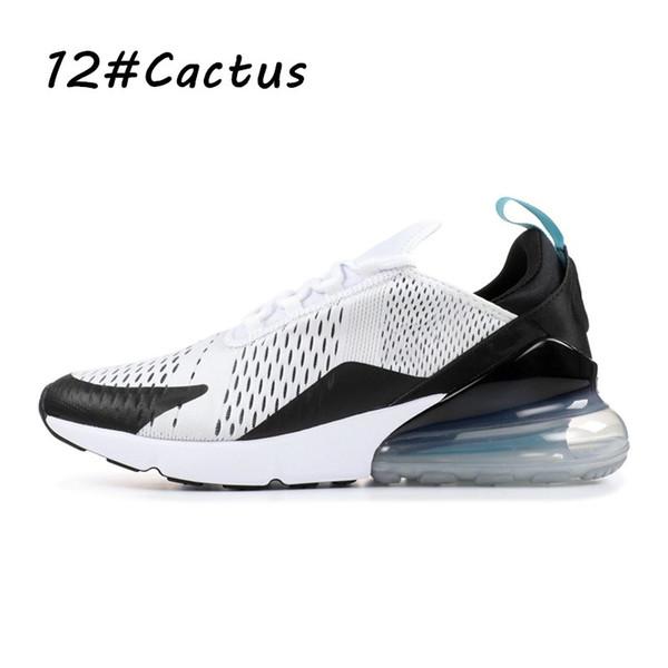 12 Cactu