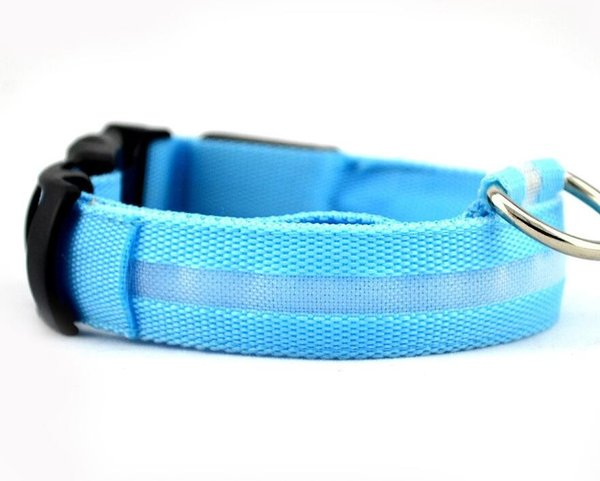 Collar-Blue(With battery)