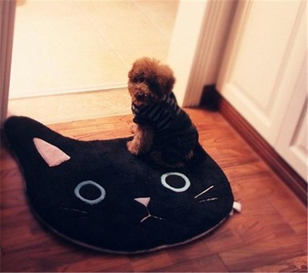 검은 고양이-약 68x68cm