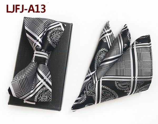 LJFJ A13