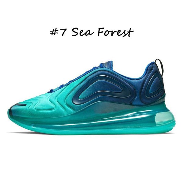 #7 Sea Forest