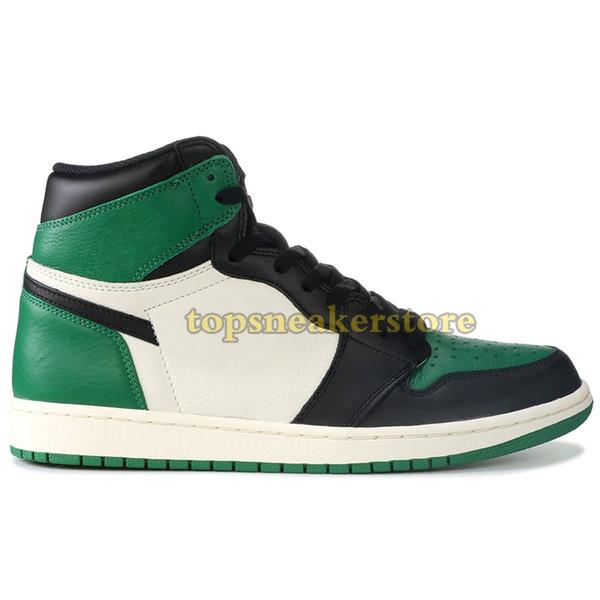 C21 Çam Yeşili