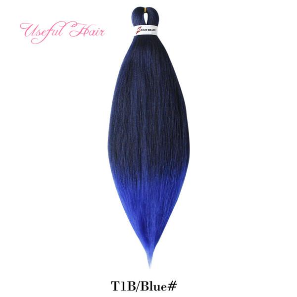 1b + bleu