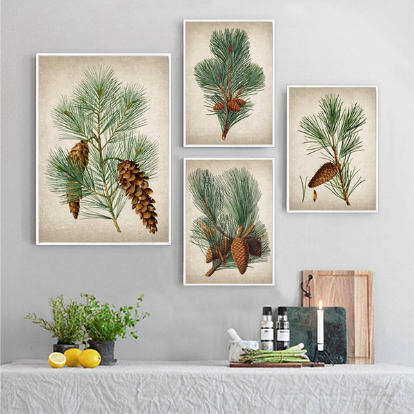Pine Plant Vintage Illustrations Posters and Prints Evergreen Pine Cones Botanical Plants Wall Art Canvas Painting Home Decor