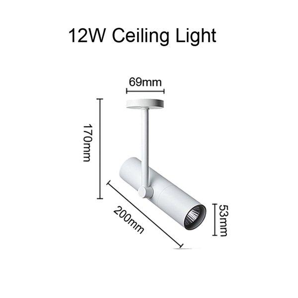 Потолочное освещение 12W