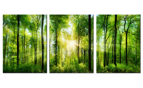 Unframed Green Tree Plants Forest Landscape The Sunshine Canvas Wall Simple Life Painting Modern Artwork Home Decor to gift