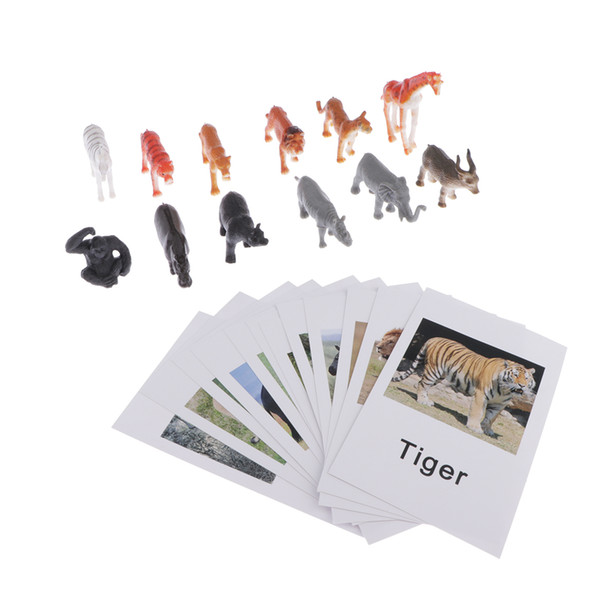 best selling Education Toy Wild Animal Group Model Naming Cards For Montessori Education