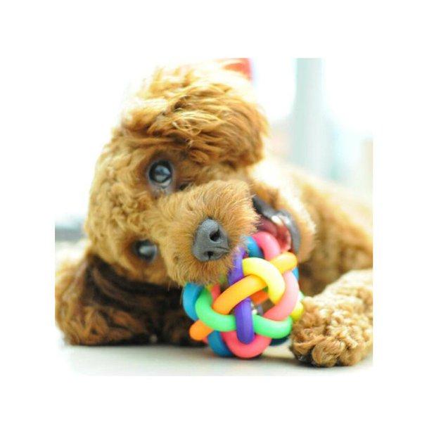 2pcs chien mignon jouets interactif chien balle chien jouet chat jouet avec petite cloche arc en ciel chiens jouets animaux à mâcher jouer aller chercher lp0172