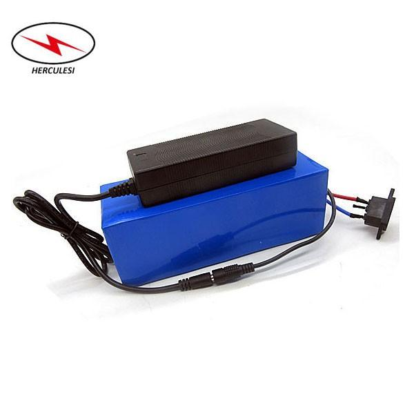 Custom size electric bike 48v 20ah lithium ion battery pack e bike akku batterie for 1000w 1500w motor with charger and BMS