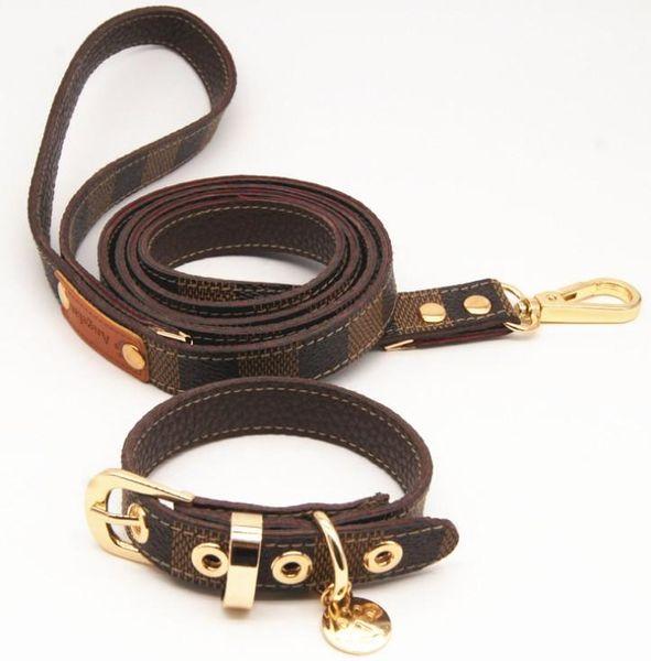 Klassisches Muster Serie Hundehalsband Leder Zugseil Anzug Walking Dog Artefakt CW004