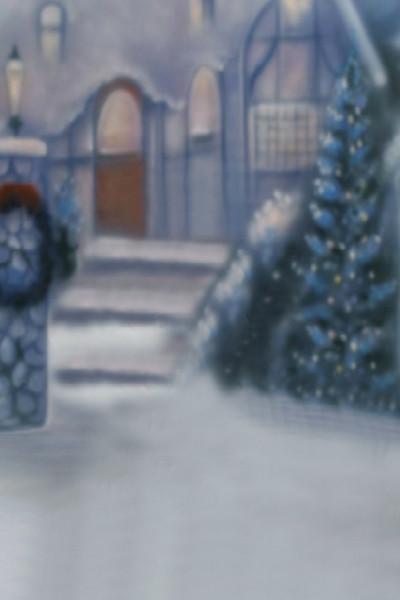 5x7FT Noel Ağacı Kış Kar Evi Adımları Sundurma Yard Özel Fotoğraf Stüdyosu Arka Planında Vinil 150 cm x 220 cm