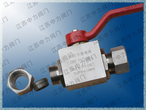 Natural gas high pressure stainless steel ferrule ball valve