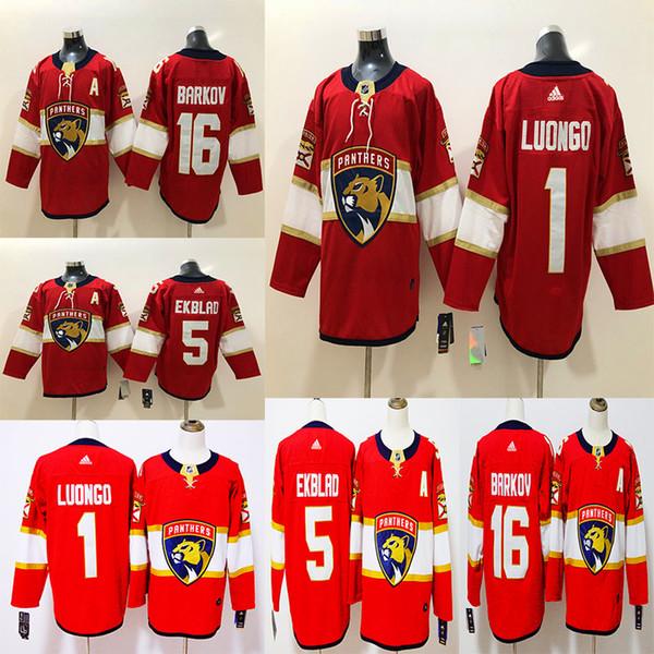 2018 Florida Panthers Newest Hockey 1 Roberto Luongo 16 Aleksander