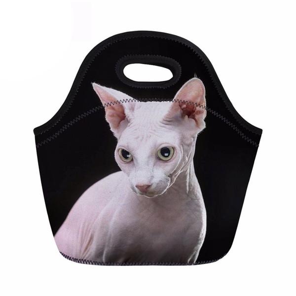 Sphynx Canadian Hairless Stampa Lunch Bag Borsa termica con isolamento termico Pranzo Picnic portatile per le donne Box