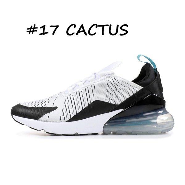 17 Cactus