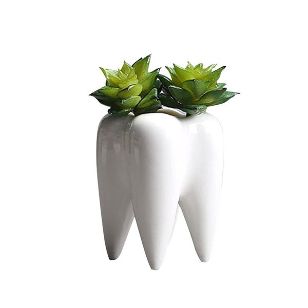 Tooth Shape Desktop Ceramic Succulent Plants Pot Modern Design Mini Planter Pots Flower Vase Decor C19041901