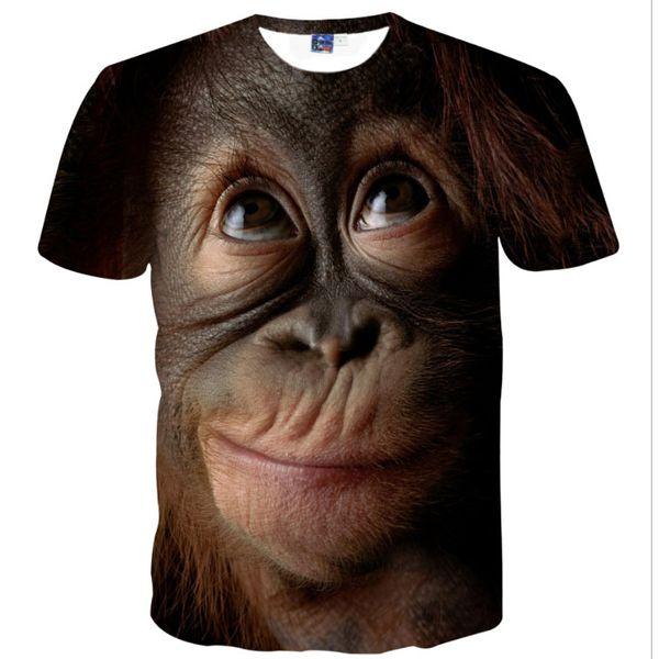 hot sale tshirts 2019 new t shirts orangutan fashion man top shirts Tees tops boys mens shirts t 3d print gorilla t shirt