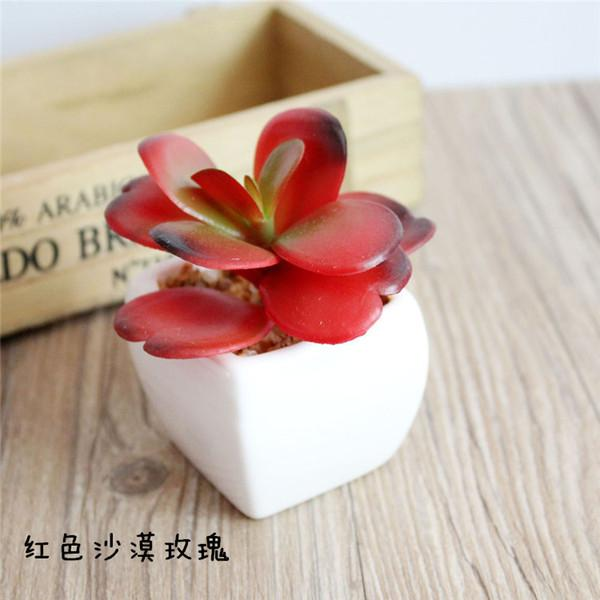 Red Desert Rose