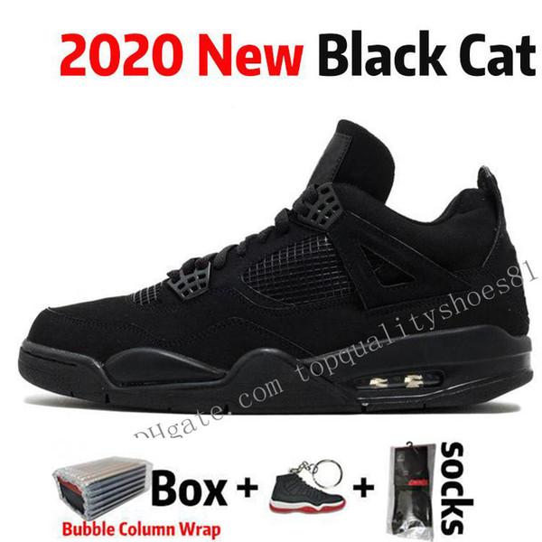15 القطة السوداء