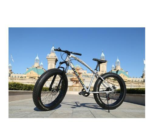 26inch silver 24 speed