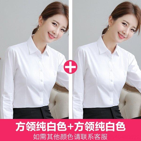 Square Collar Pure White x 2