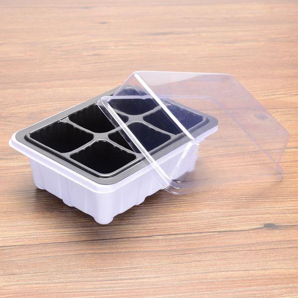 6-delikli tohum kutusunun