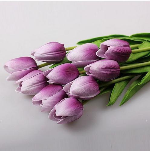 Bianco Viola