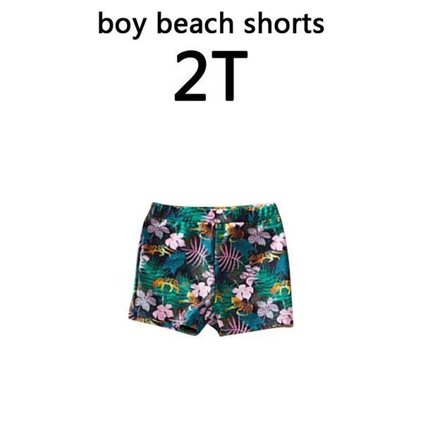 boy 2T