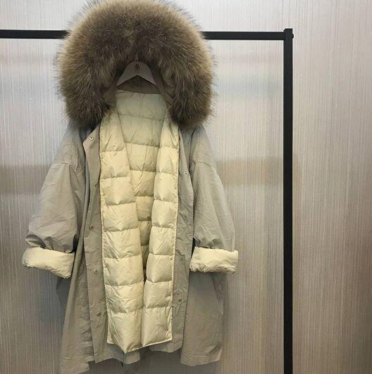 grey coat brown fur