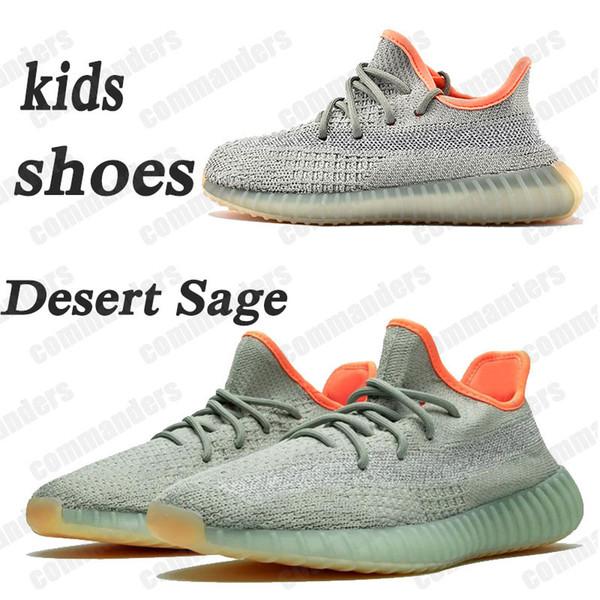 # 10 24-48 Wüste Sage Reflektierende