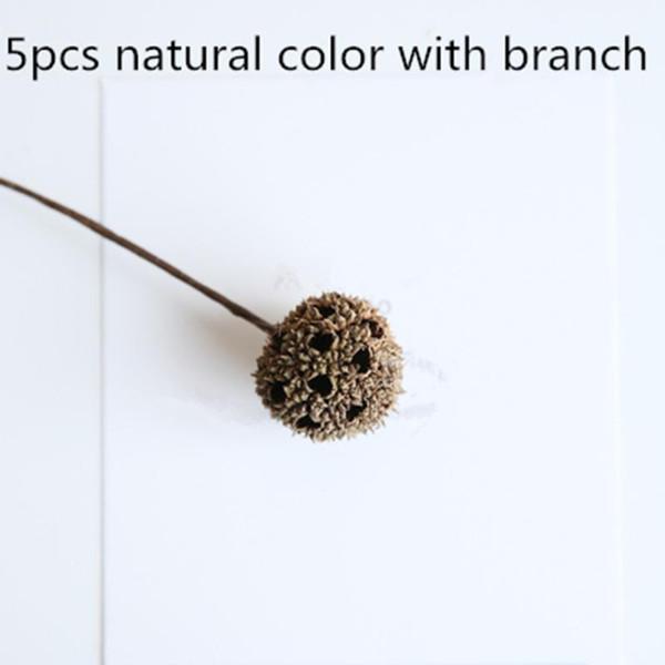 5pcs natürlicher Zweig