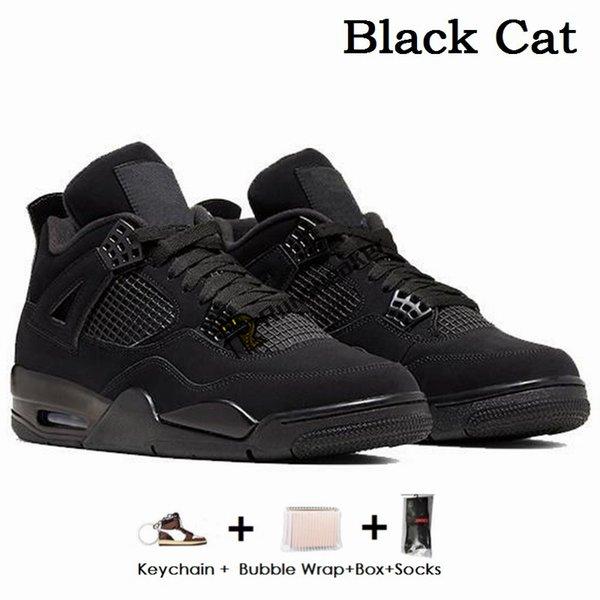 4S - القطة السوداء