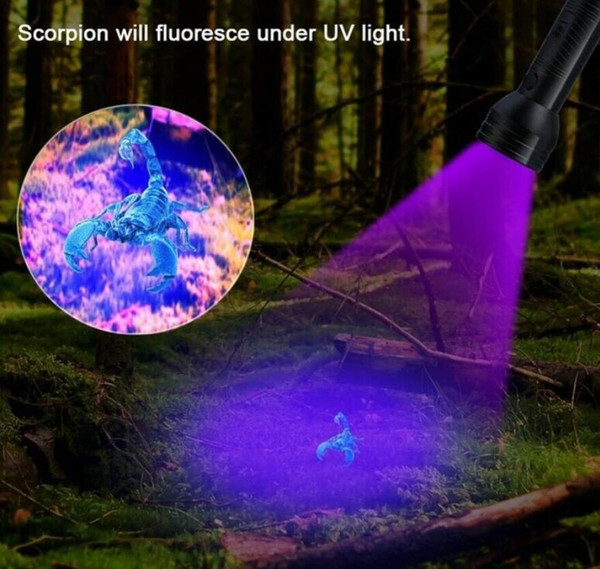 top popular Uv 51Led Flashlight 51 Leds 395nm Ultra Violet Torch Light Lamp Blacklight Detector for Dog Urine Pet Stains and Bed Bug 2021