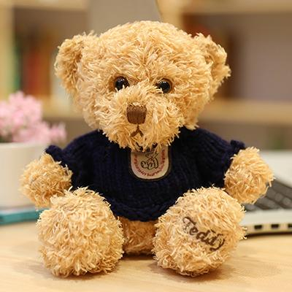 Light brown dark blue sweater bear