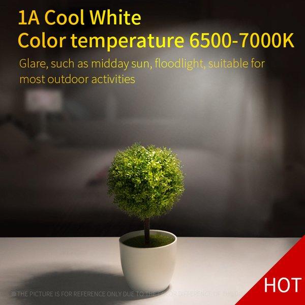 Cool White-Titanium Color