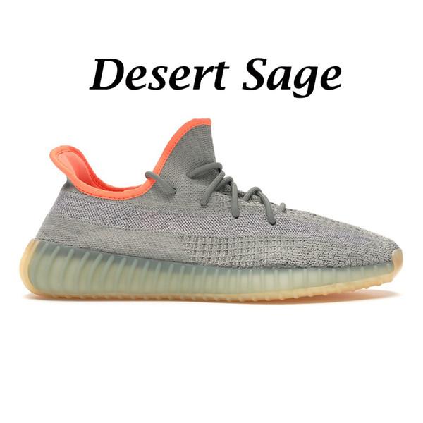 Sauge du désert