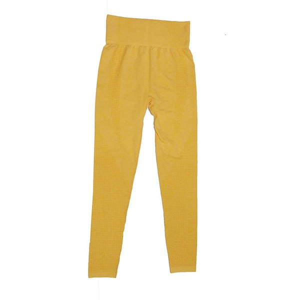 NS6023 Sarı