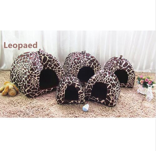 leopard m