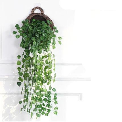 Traubenblätter