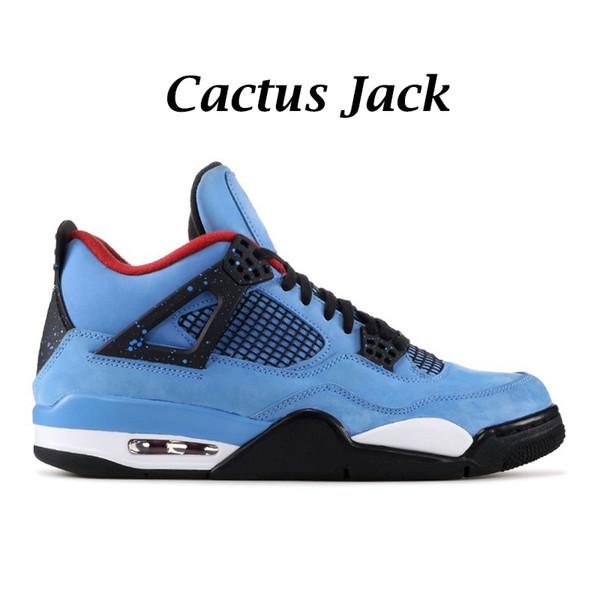 Kaktus-Jack