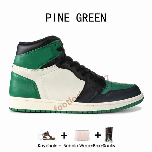 1С-Сосна Зеленая