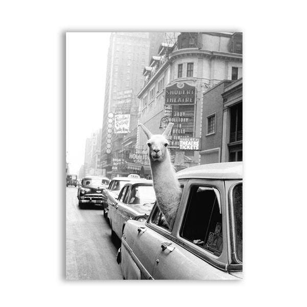 6d195-A5 15x21 cm No Frame