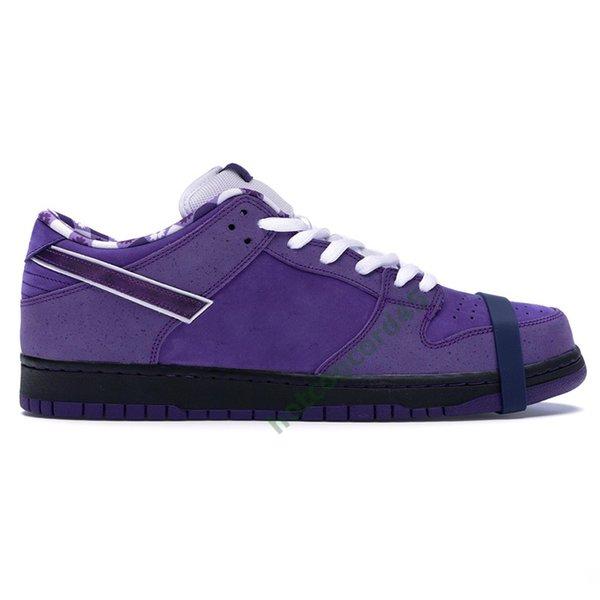 15 Concepts purple