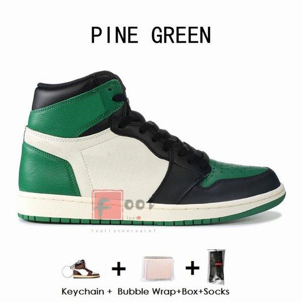 1 S-Çam Yeşil