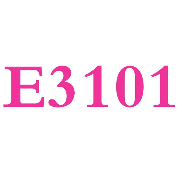 E3101