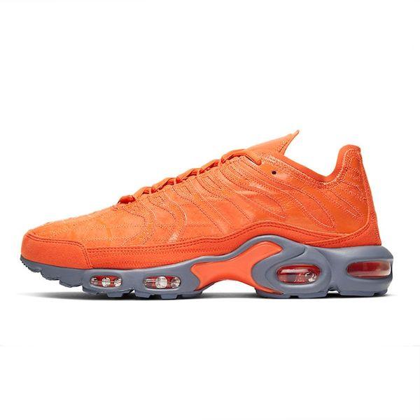 8 Insgesamt Orange
