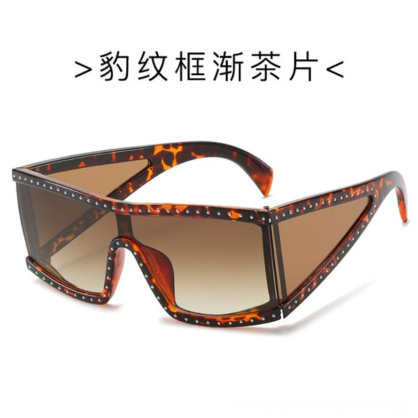 C3. Leopard Frame Tea Slice